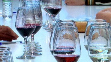 """Según el CR de la DO Bierzo los vinos de 2012 son """"Excelentes"""""""