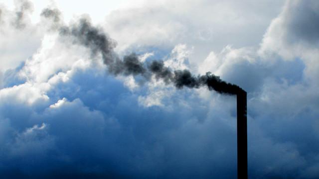 C´s de Cubillos alega que el proyecto de Forestalia contamina el suelo, las aguas y la atmósfera