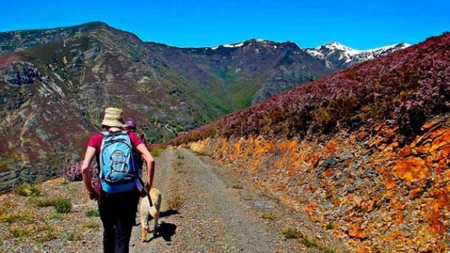 La Reserva de la Biosfera de los Ancares organiza unas jornadas sobre turismo en Vega de Espinareda