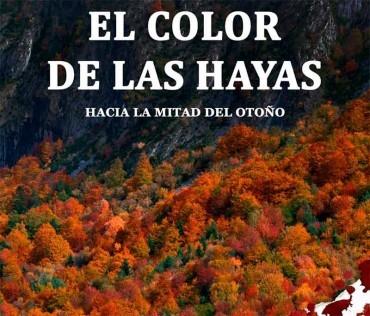 """Epigmenio Rodríguez presenta en la Casa de las Culturas """"El color de las hayas"""""""