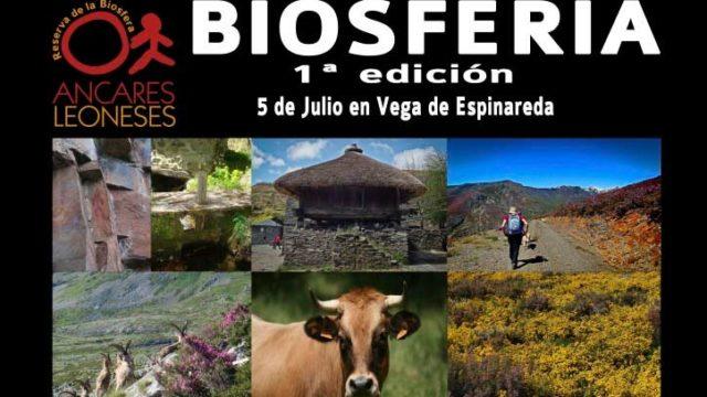 Vega de Espinareda acoge la I Feria de la Reserva de la Bisofera