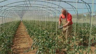 """José Manuel: """"Me faltaban terrenos y gracias al Banco de Tierras estoy con un proyecto adelante"""""""