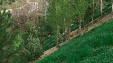 El Ministerio de Medio Ambiente subvenciona a través de Parques Nacionales el taller de empleo Ciuden Vivero VI