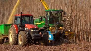 La Junta busca la eficiencia energética a través de la biomasa y la renovación del alumbrado como el realizado en Ponferrada