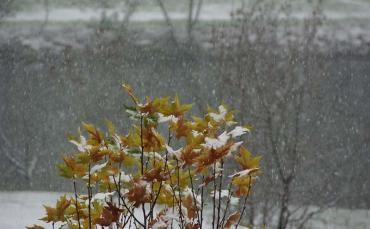 Investigadores de la ULE analizan cómo predecir las nevadas extremas
