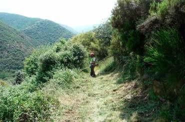 El Consejo Comarcal finaliza el acondicionamiento del Camino de Santiago en el Bierzo