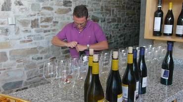Los vinos de la D.O. Bierzo se presetan en la Feria de Muestras de Asturias