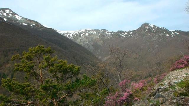 La Reserva de la Biosfera de los Ancares imparte talleres en colegios para dar a conocer el patrimonio natural y cultural
