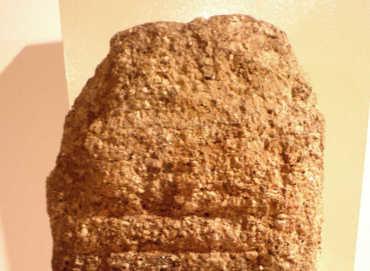 La colonización romana de Bembibre representada en su Ara Votativa