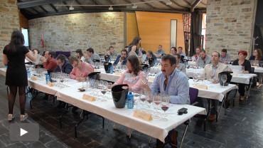 25 expertos nacionales califican los vinos de la DO Bierzo de 2015 como excelentes