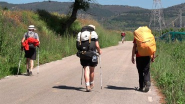 Diputación analizará los puntos deficientes del Camino de Santiago en la provincia