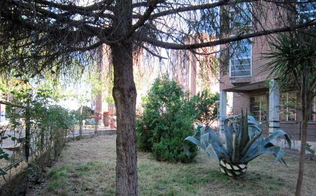 Medio Ambiente y la Escuela-Taller acondicionan toda la zona verde de la Escuela-Hogar