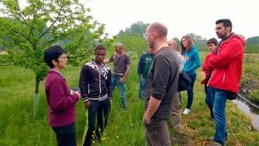 Los participantes de la I Semana Internacional del Campus visitan los sotos de castaños de las Médulas