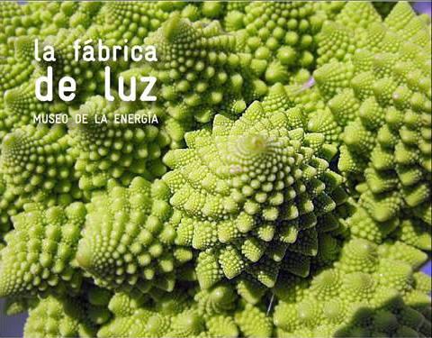 cocinando-fractales