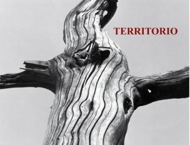"""La Casa de las Culturas acoge la exposición """"Territorio"""" de Martinferre"""