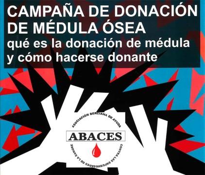 donacion-medula-osea.jpg