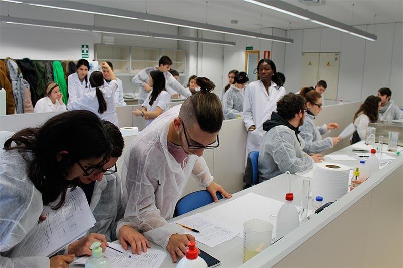 jovenes-investigadores