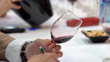 La venta de vinos de la D.O. Bierzo crece un 27% desde el 2012