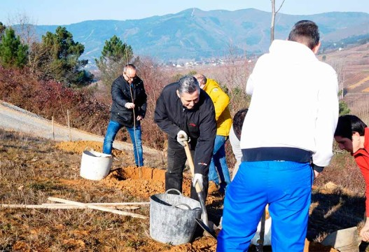 cementos-cosmos-donacion-arboles-para-proyecto-hombre.jpg