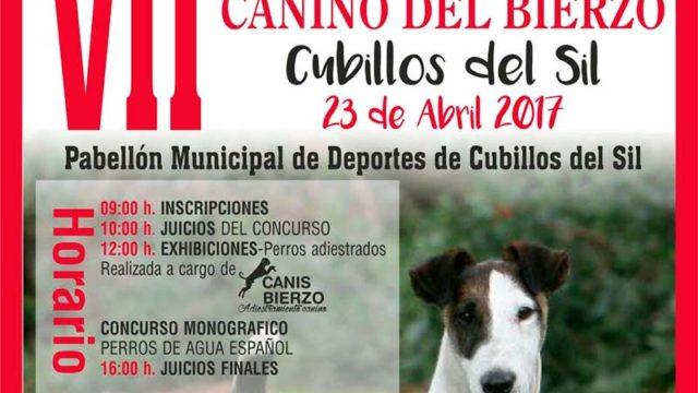 Cubillos acoge le VII Concurso Nacional Canino del Bierzo