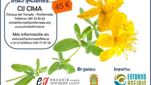 Curso de plantas medicinales del Bierzo