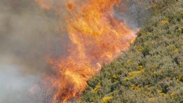 Ampliada hasta el 30 de junio la declaración de peligro de incendios forestales