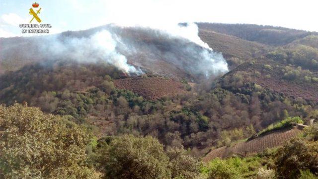 Esclarecido el incendio de Corullón en el que se quemaron 7 hectáreas de castaños