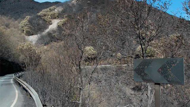 Aprobadas las actuaciones hidrológico-forestales para paliar los daños del incendio de la Tebaida
