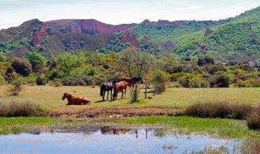 Curso de Verano de la ULE en Villafranca para descubrir el patrimonio natural del Bierzo