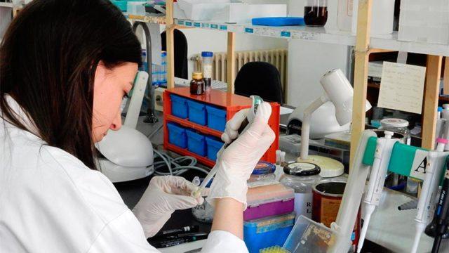 La ULE obtiene el segundo puesto en producción científica de Castilla y León
