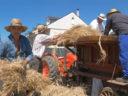Camponaraya vuelve a sus raíces agrícolas con la Fiesta de la Maja
