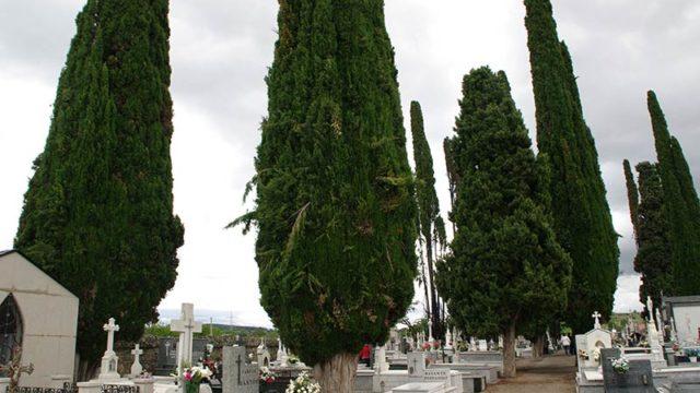 El ayuntamiento de Cacabelos destina 36.000 € para derribar la ampliación del Cementerio
