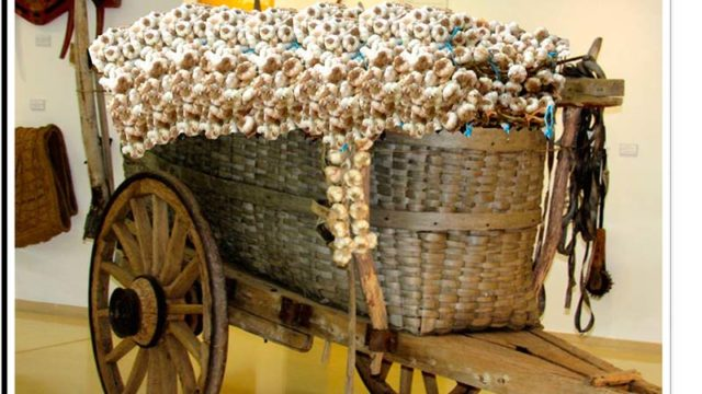 Bembibre celebra el tradicional 'Mercado de ajos'