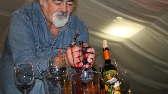 Palacio de Canedo celebra la Fiesta del Vino con el crítico Luis Paadín