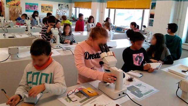 Los niños de primaria aprenden a identificar organismos en los laboratorios del Campus
