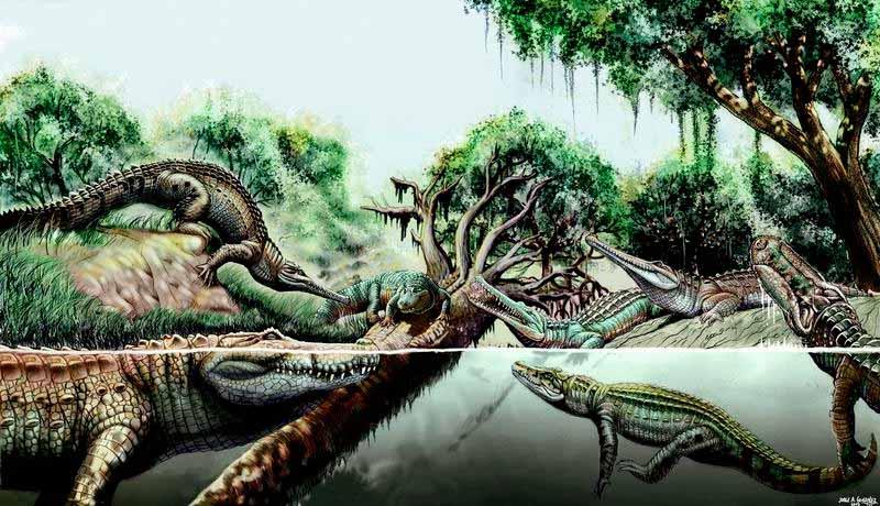 reconstrucción de especies de dinosaurios - Jorge A. González