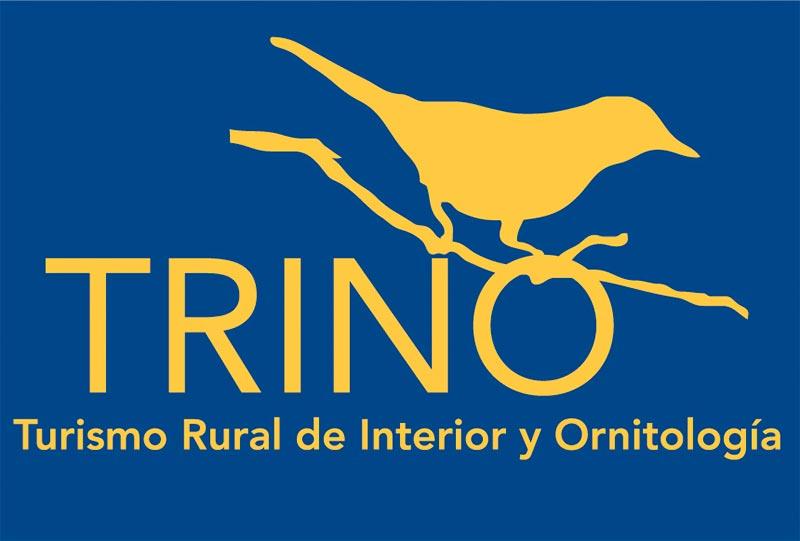 Proyecto Trino