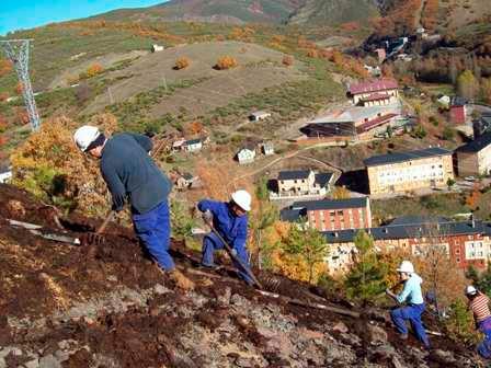 Restauración de escombrera en Tremor