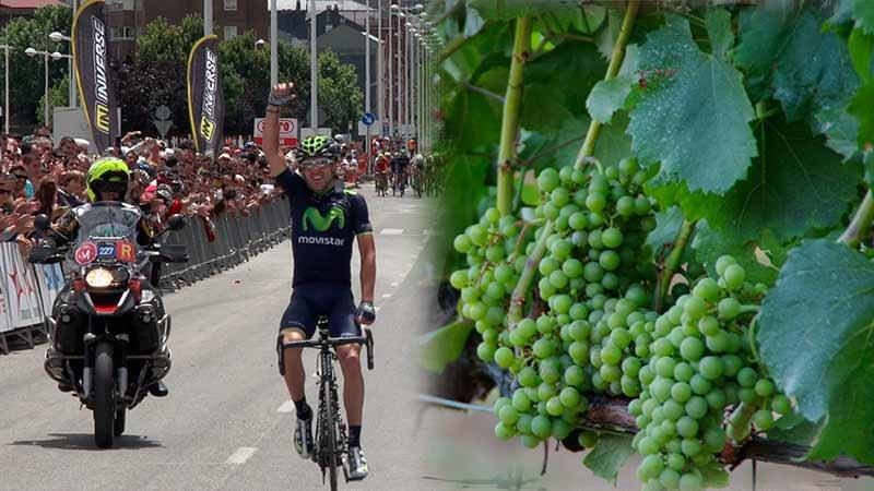 mundial-viticultura