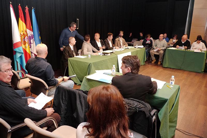 Pleno del Consejo Comarcal en el Centro Cultural Río Selmo. Foto: Raúl C.