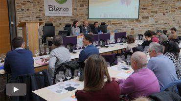 2018032202_bierzo-hub-viticultura_p.jpg