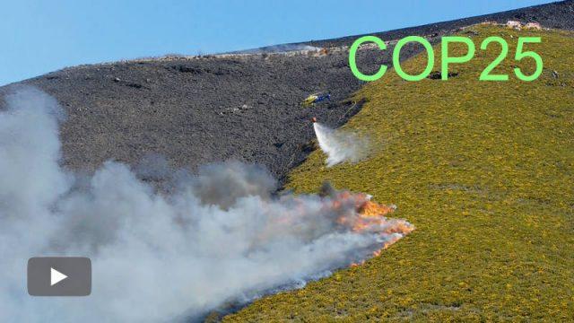 2019121103_mitigacion-del-cambio-climatico-incendios_p.jpg