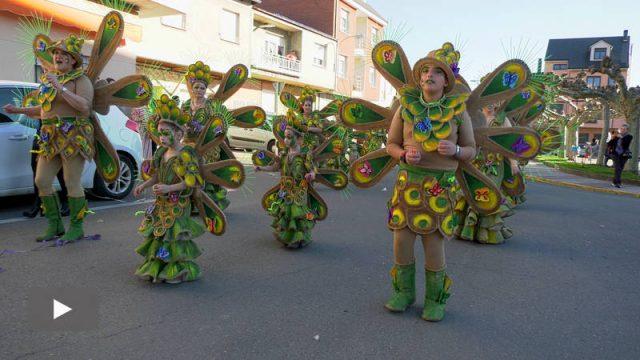 20200223_desfile-carnaval-camponaraya_p.jpg