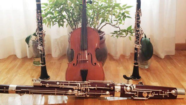 Ensemble-Interamnium-Flavium.jpg