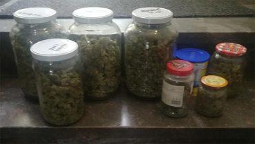 alijo-marihuana.jpg