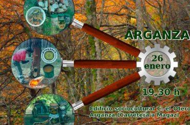 alternativas-economicas-plantacion-eucaliptos-arganza.jpg