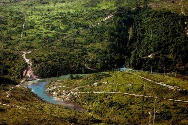 amazonia-peruana.jpg