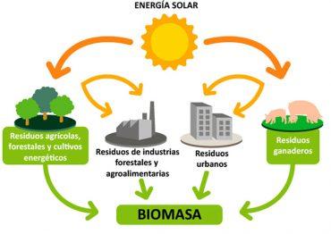 biomasa-efiex.jpg