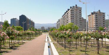 bulevard-juan-carlosI-Rosaleda.jpg