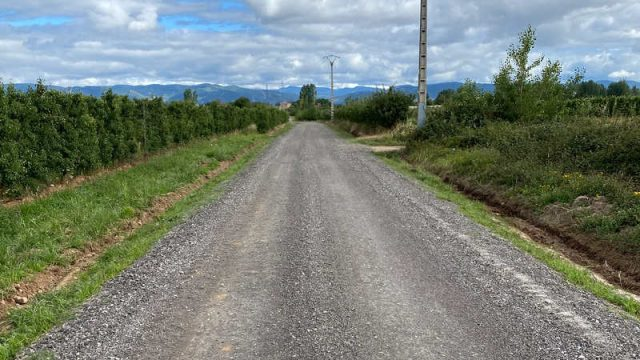 camino-transporte-fruta-carracedelo.jpg